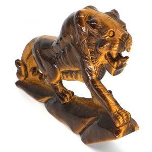 Oeil de tigre – Propriétés et vertus