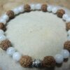 Bracelet Pierre de lune-Rudraksha perles rondes 8-6 mm